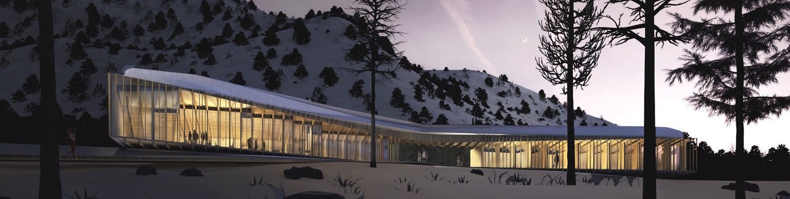 rendering of long cabin in woods lit up at night