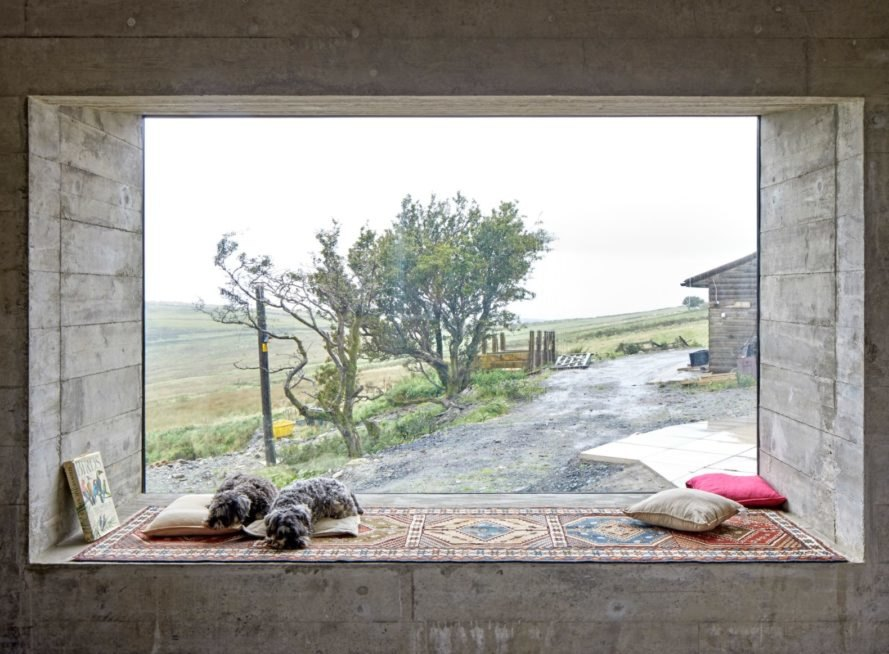 large window with sitting space with two dogs sleeping