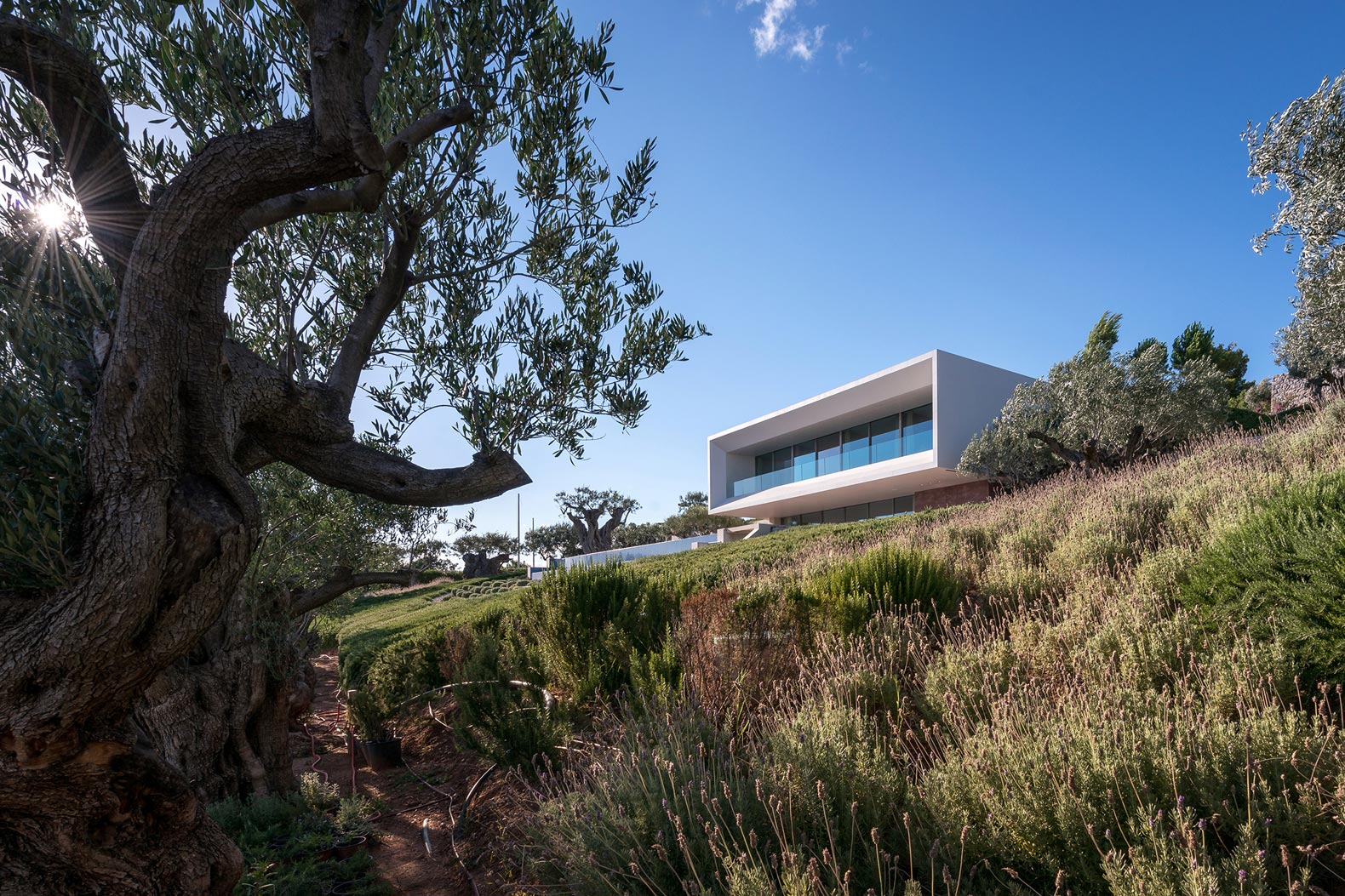 Striking home in Greece uses bioclimatic features to be energy-efficient year-round