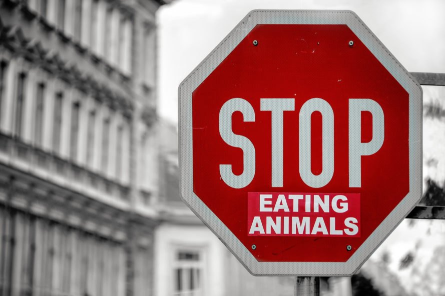 "red stop sign with a sticker that says, ""Eating Animals"" just below the word, ""Stop"""
