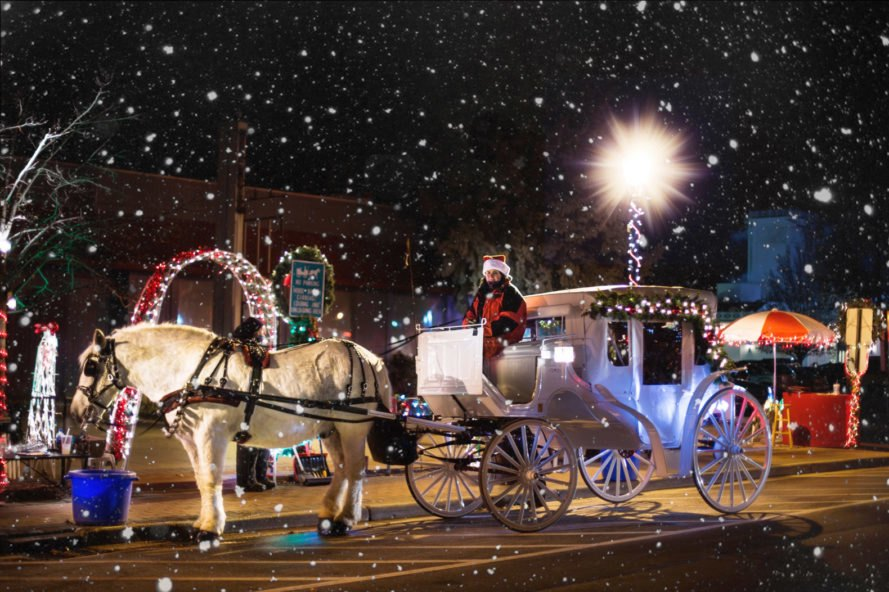 Horse-drawn carriage with white horse in the snow on a street