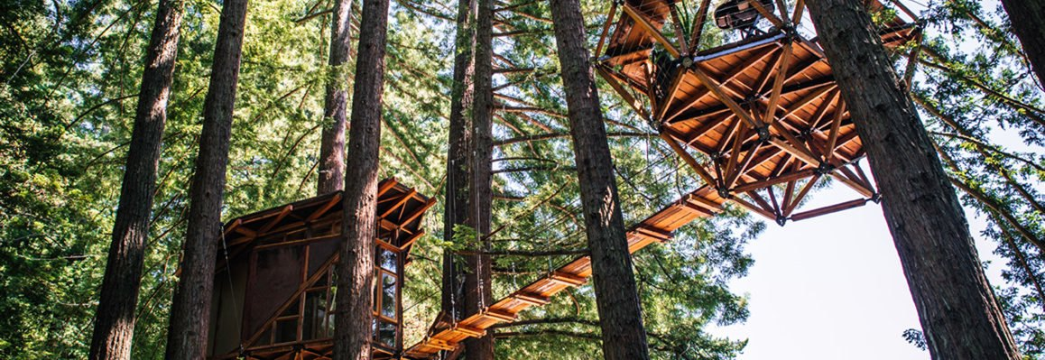 pinecone shaped treehouse in the trees