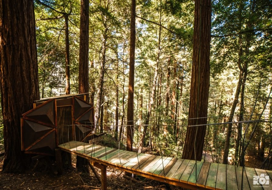 suspension bridge leading to treehouse