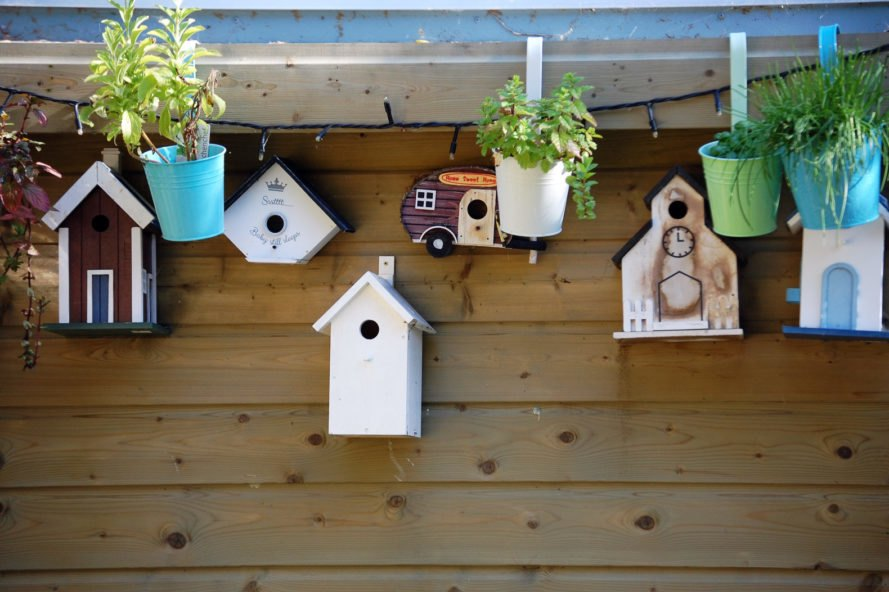 quirky birdhouses lined up against a shed