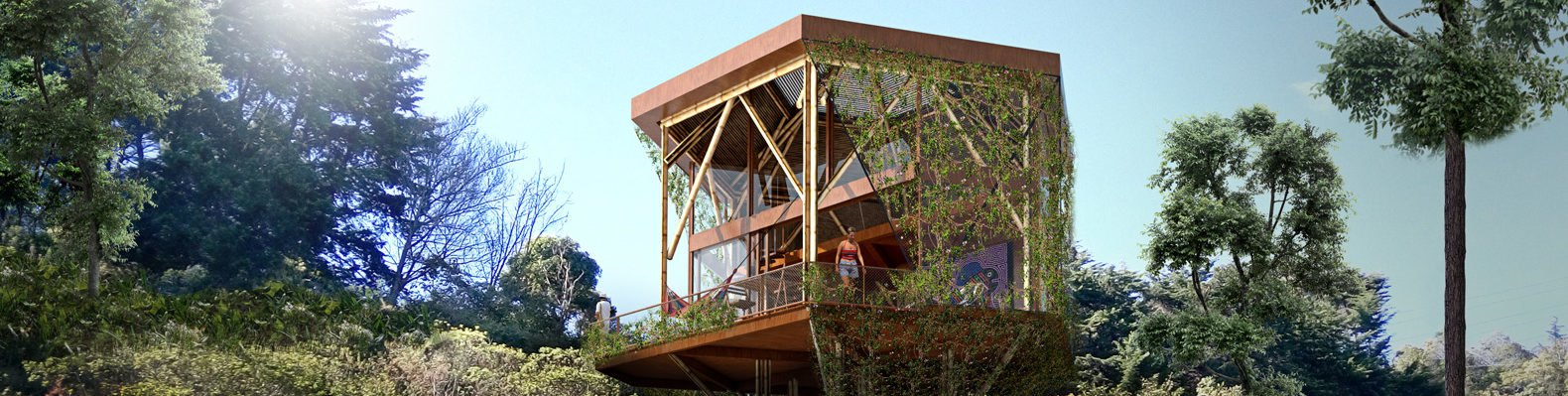 angular bamboo building surrounded by greenery