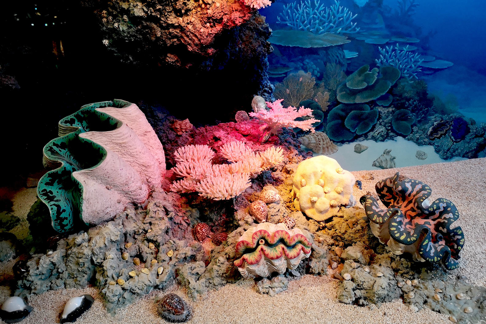 New innovations in geoengineering are needed to save the coral reefs