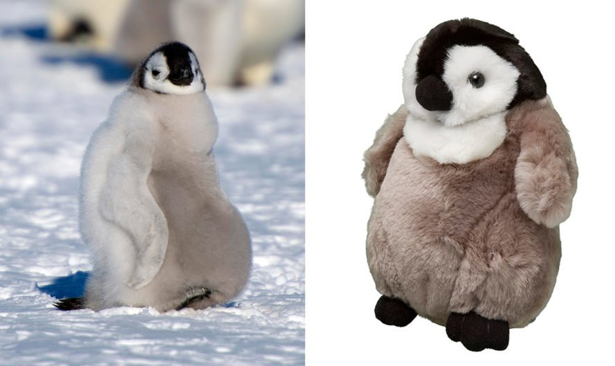 On the left, picture of emperor penguin chick in the snow. On the right, stuffed animal version of an emperor penguin chick.