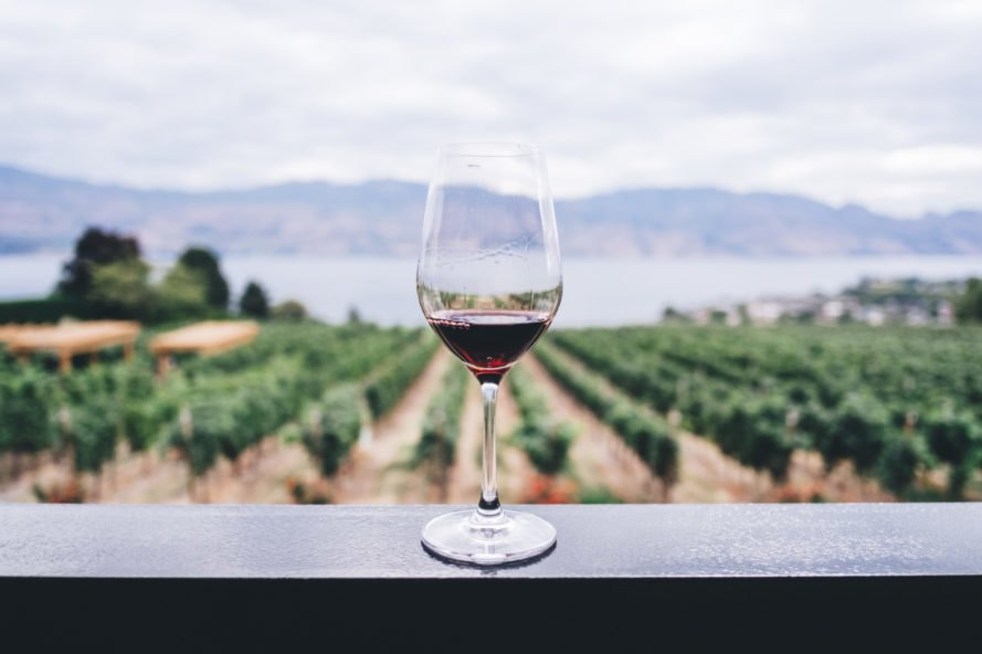 Glass of wine on table with vineyard in background