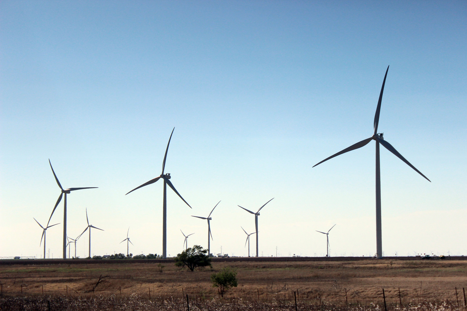 Major utility company Xcel Energy commits to go carbon-free by 2050