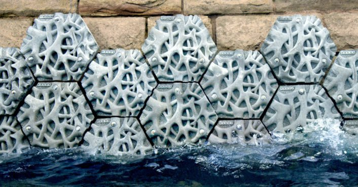 Volvo creates the living seawall in Sydney to help with plastic pollution