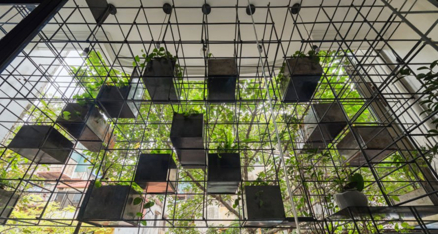 cubic steel grid system with hanging plants