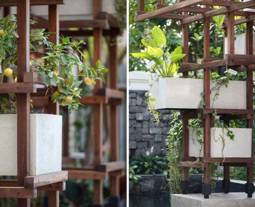 green plants hanging from wooden framing
