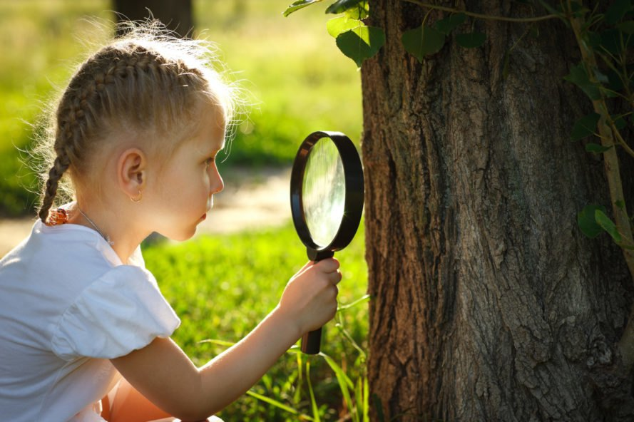 child using magnifying glass to study tree bark