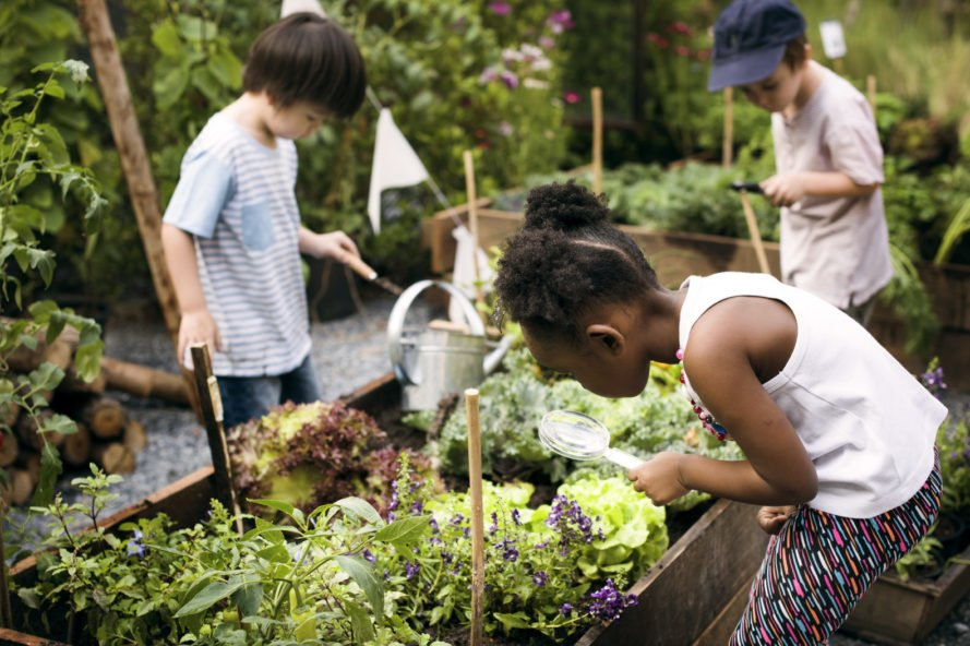 three children tending to a garden