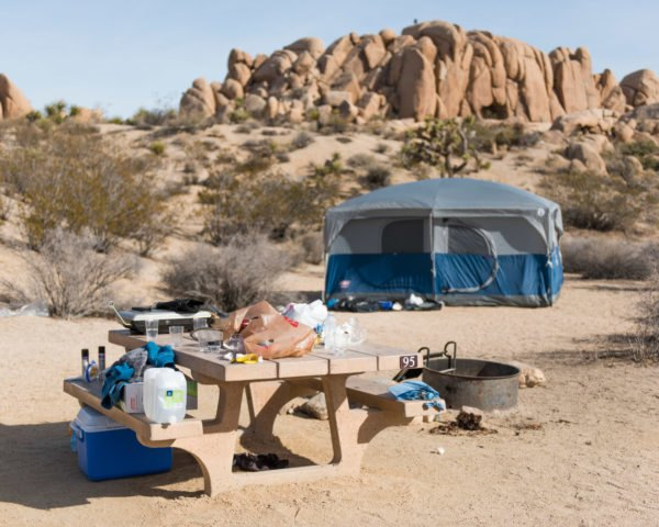 Unattended food left in a campsite at Joshua Tree National Park