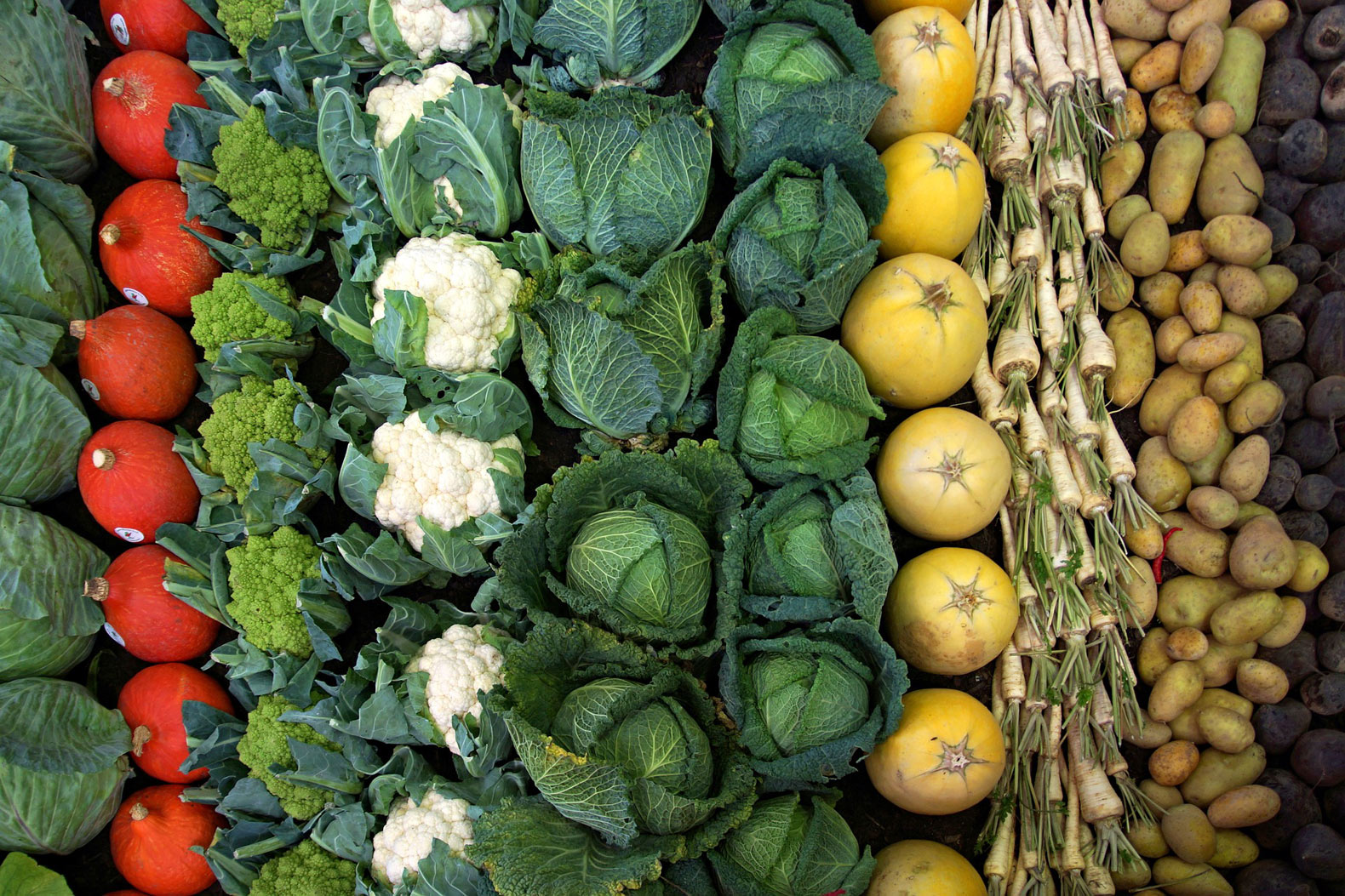 Follow this diet for both personal and planetary health