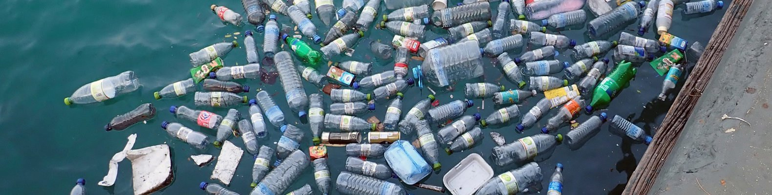 plastic bottles and trash in water
