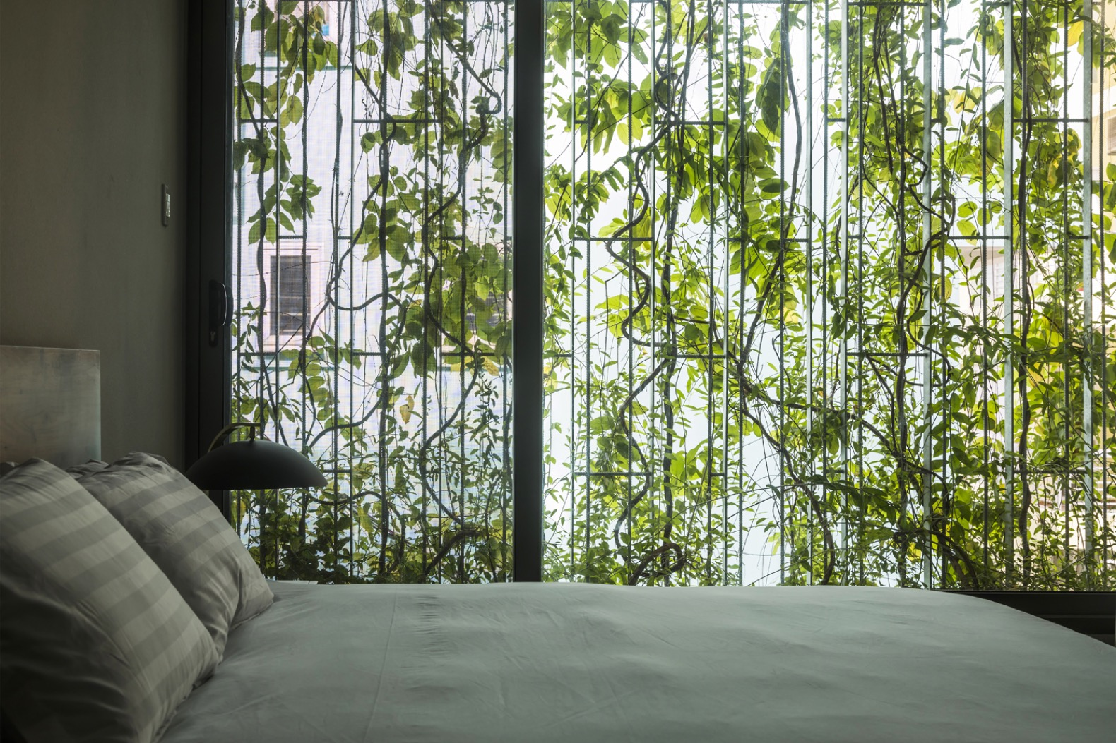 "A ""green veil"" of plants protects this home from Ho Chi Minh City's heat"