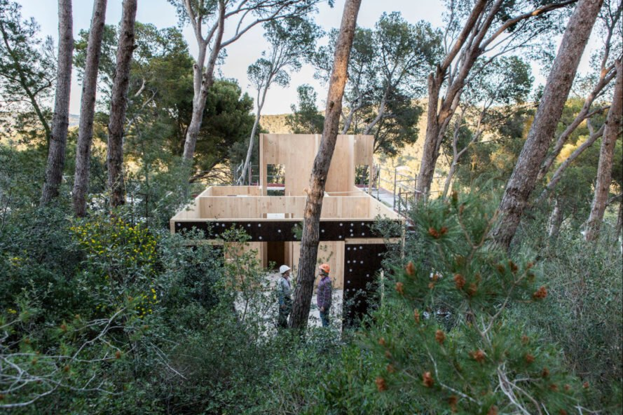 a cork-clad structure on stilts surrounded by trees