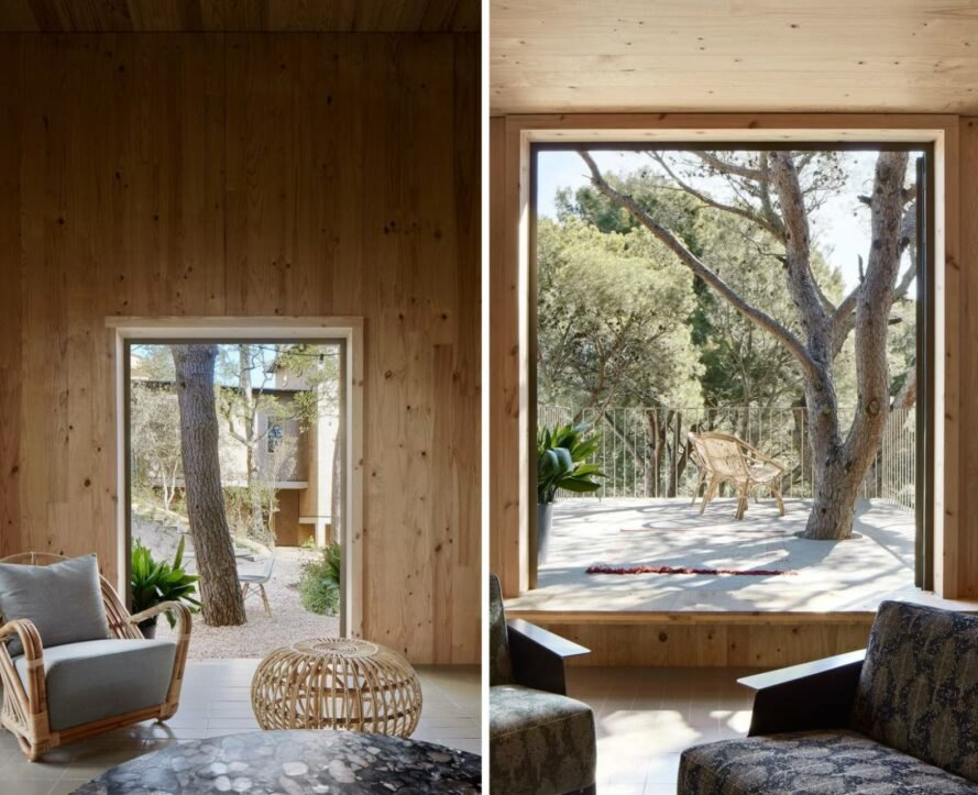 wood-lined room with large windows revealing forest views