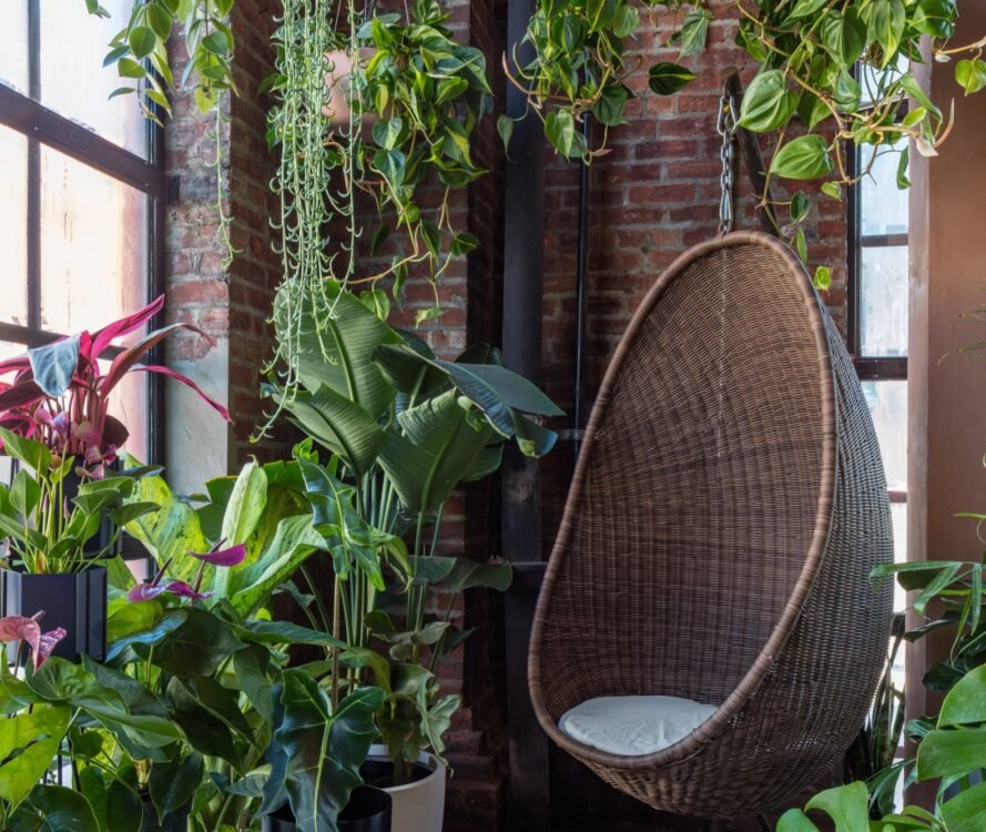 hanging wicker chair surrounded by plants