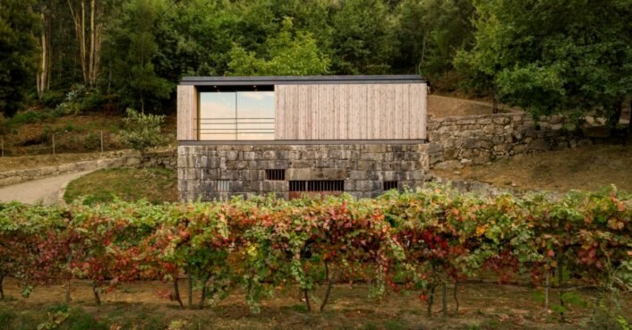 A micro home with a green roof sits atop a granite wine cellar in