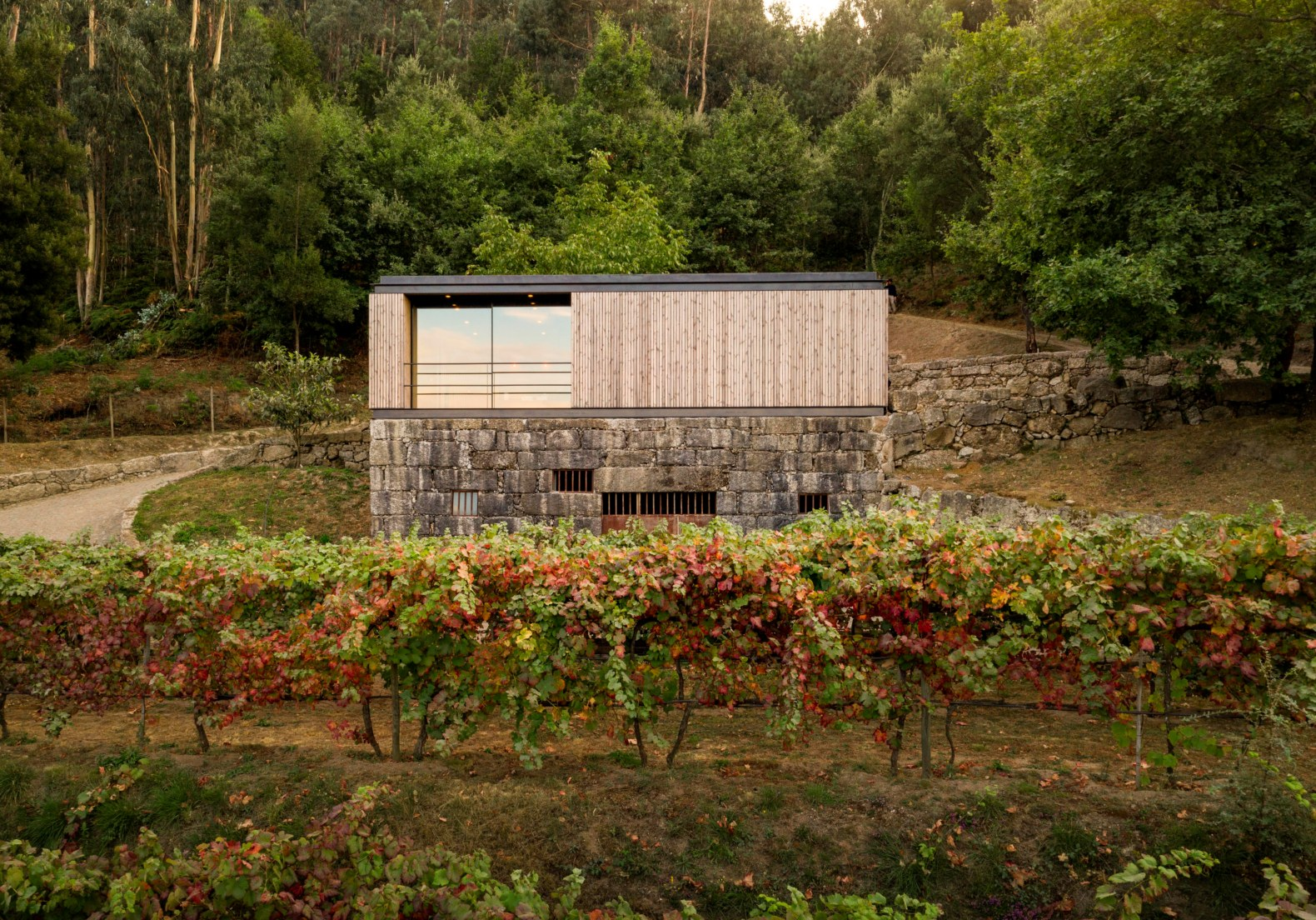 A micro home with a green roof sits atop a granite wine cellar in rural Portugal