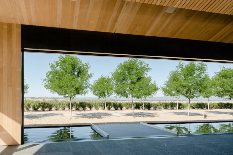 view of trees with a reflecting pool