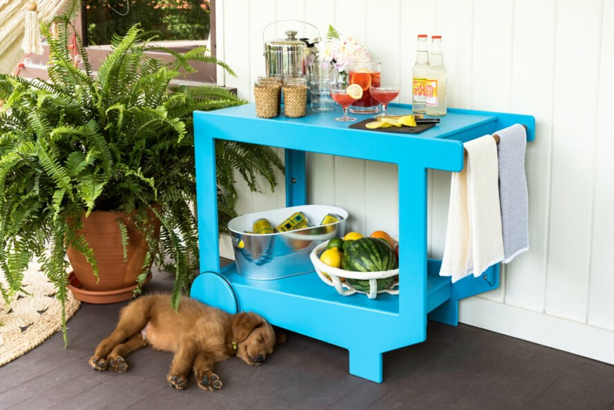 puppy sleeping next to bright blue bar cart