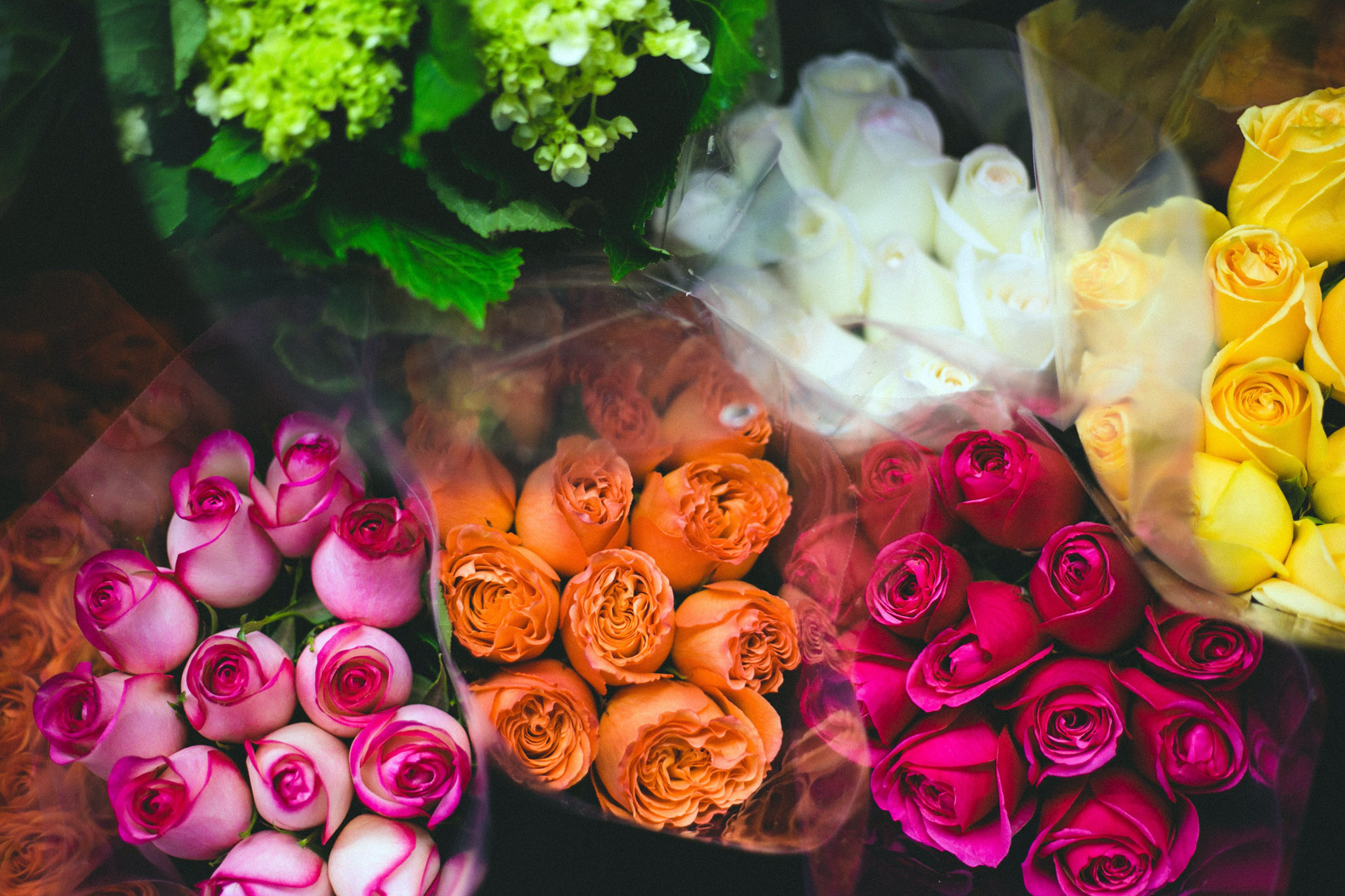 Valentine's Day flower deliveries come at a huge cost to the environment