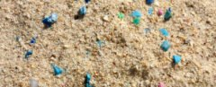 tiny pieces of plastic in sand