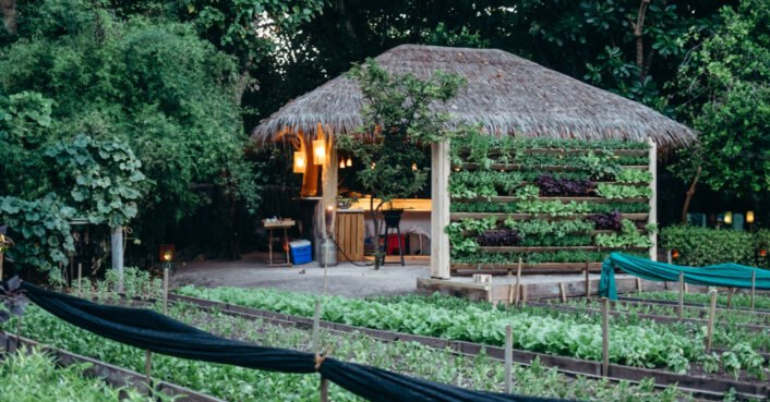 Vegetarian restaurant in the Maldives lets guests harvest their own