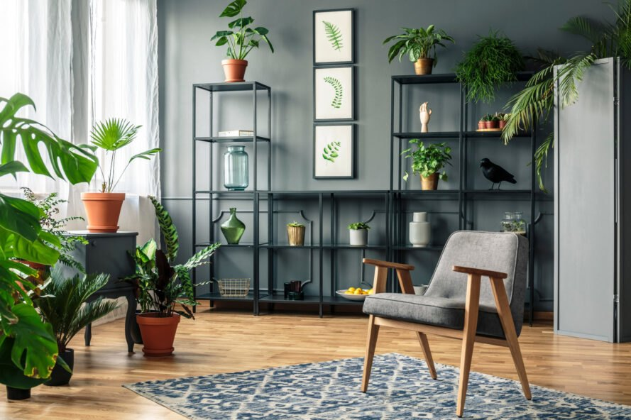 chic modern living room with bookshelf and plants