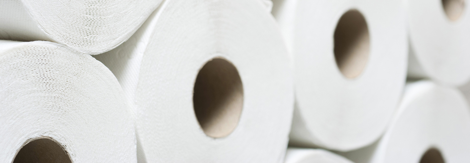 The environmental problem with toilet paper and what to use instead