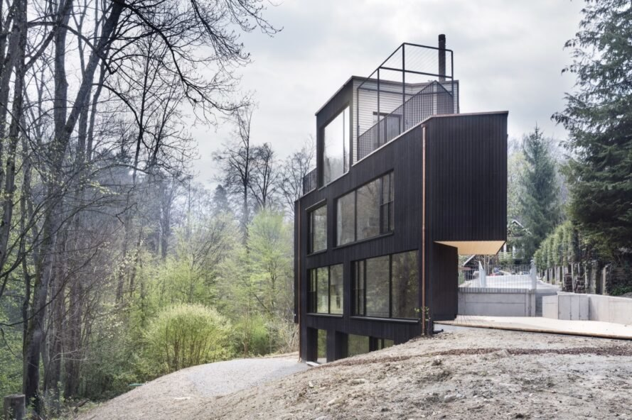 triangular charred timber home in forest