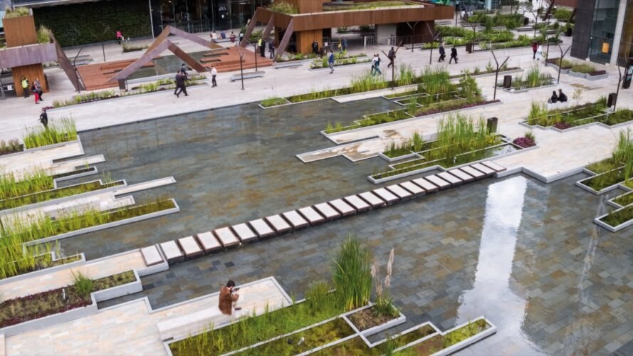 urban wetland with greenery and wooden walkways
