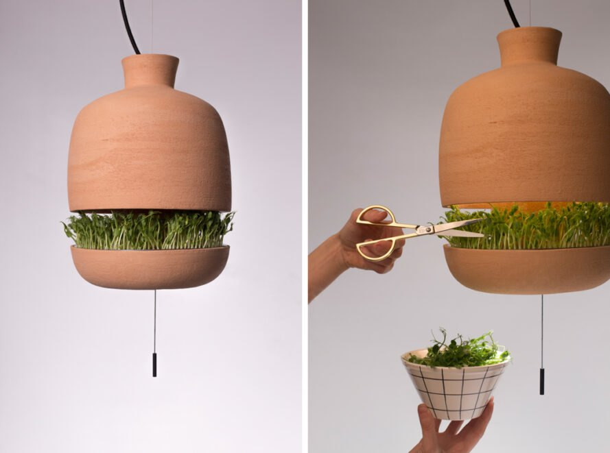 On left, hanging terracotta lamp with plants inside. On right, hand clipping herbs from lamp into a bowl.