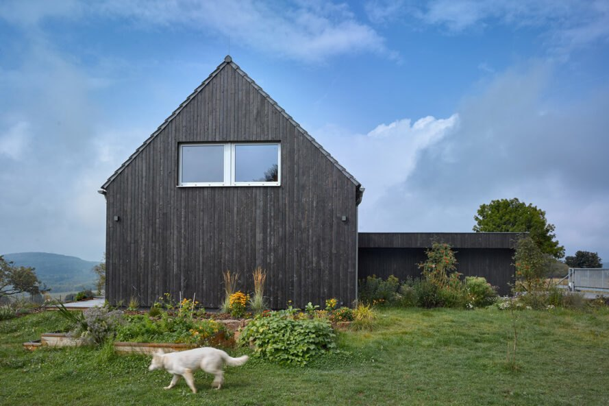 passive house surrounded by greenery and three white dogs