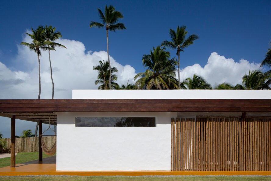 Side of the house with a white wall and exposed twigs with palm trees in the background