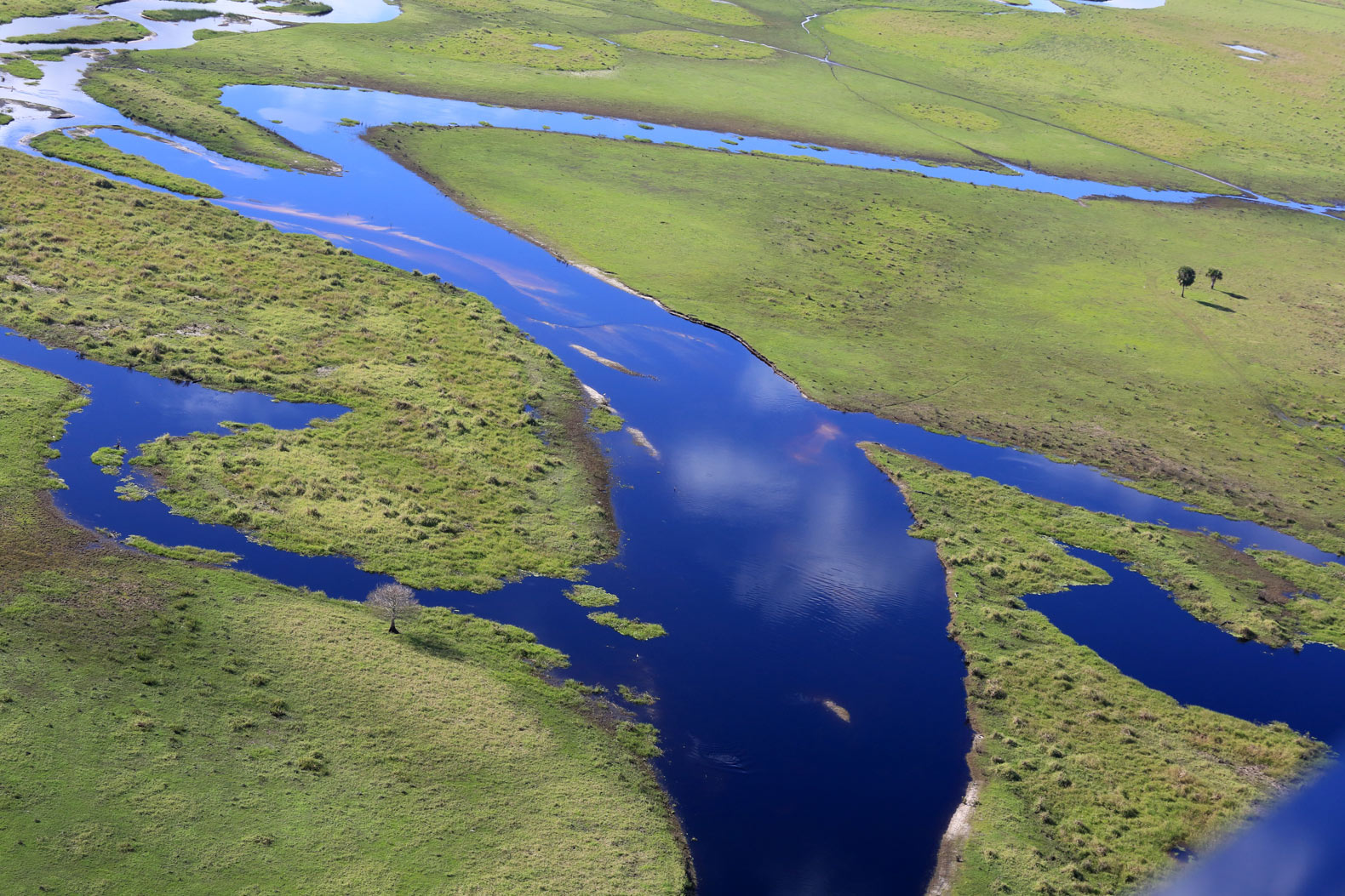 Can Florida save its prized Everglades from climate change destruction?