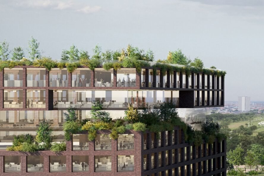 rendering of roofs covered in plants