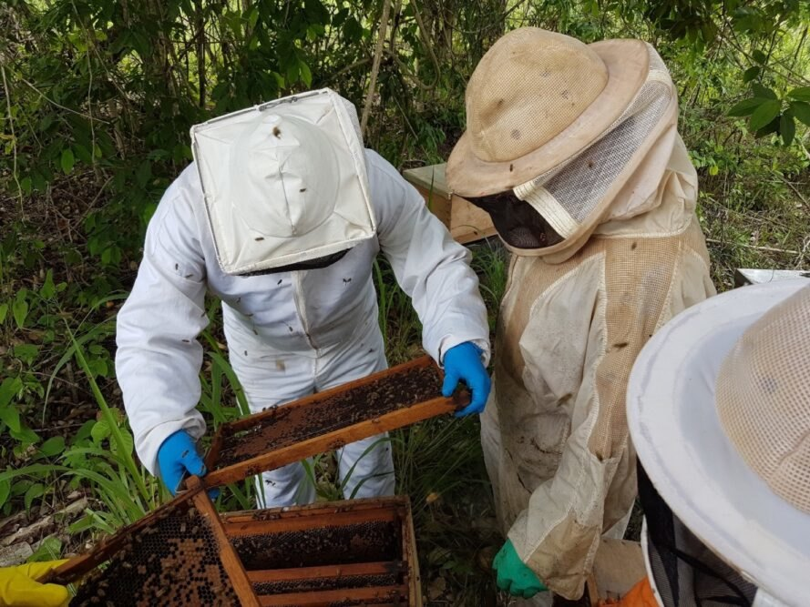 two beekeepers in suits