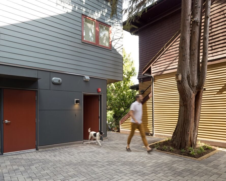 person walking dog beside a tree and gray building