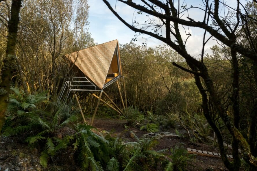wooden angular cabin in a forest