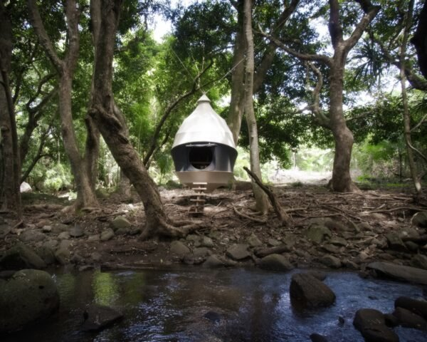 cocoon-shaped tent in a forest