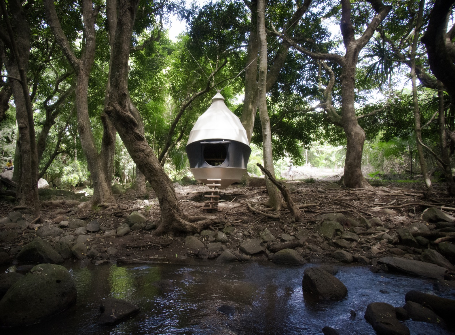 Cozy pop-up Seedpods let you escape into nature with a minimal footprint