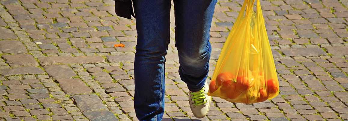 New York vows to ban plastic bags statewide in 2020