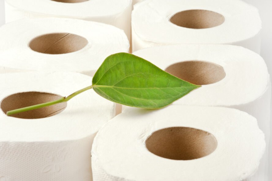 leaf on rolls of toilet paper