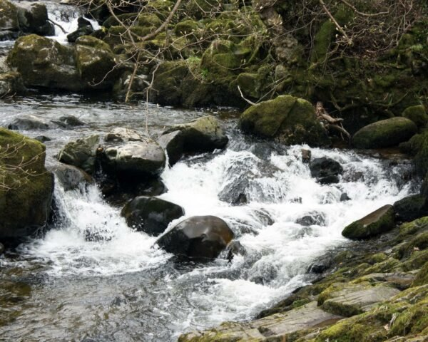 stream cascading over rocks