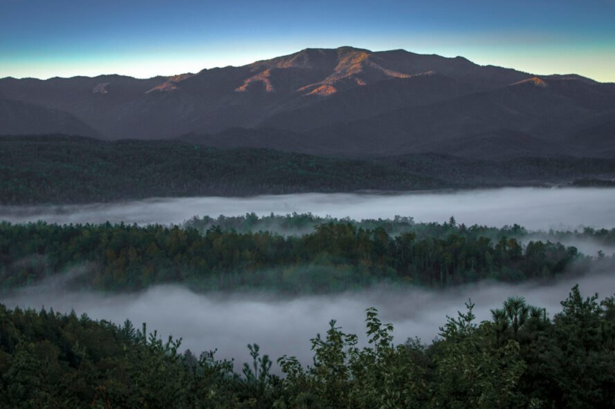 fog covering trees at base of mountains in Great Smoky Mountains National Park